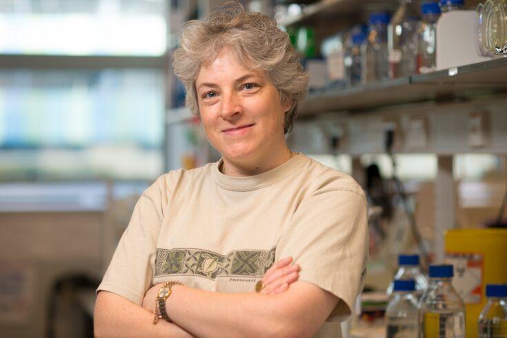 Professor Judy Hirst