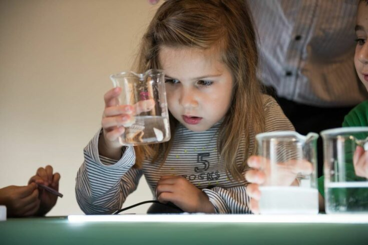 child looking at liquid in a beaker