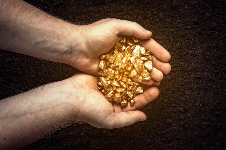 Gold nuggets the hands of a miner