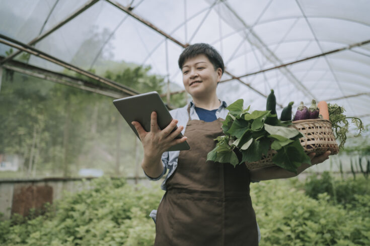 asian chinese mid adult woman examining her organic farm growth with digital tablet recording